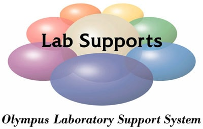 Lab Supports